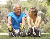 Couple de personnes âgées exerçant dans le parc — Photo