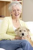 Senior Woman Holding Dog On Sofa — Stock Photo
