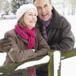 Senior Couple Standing Outside In Snowy Landscape — Stock Photo #4836058