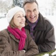 Senior Couple Standing Outside In Snowy Landscape — Stock Photo