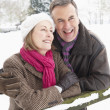 Senior Couple Standing Outside In Snowy Landscape - Foto de Stock