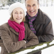 图库照片: Senior Couple Standing Outside In Snowy Landscape