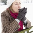Senior Woman Standing Outside In Snowy Landscape Warming Hands - 图库照片