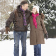 Senior Couple Walking In Snowy Landscape — 图库照片
