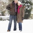 Senior Couple Walking In Snowy Landscape - 图库照片