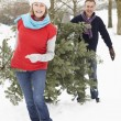 Senior Couple Carrying Christmas Tree In Snowy Landscape — Stock Photo #4836093