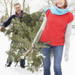 Senior Couple Carrying Christmas Tree In Snowy Landscape — Stock Photo #4836095