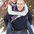 Senior Couple Outside In Snowy Landscape — Stock Photo