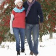 Senior Couple Walking Through Snowy Woodland — 图库照片