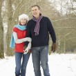 Senior Couple Walking Through Snowy Woodland - Stockfoto