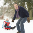 Senior Couple Sledging Through Snowy Woodland - Stock Photo