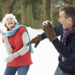 Senior Couple Having Snowball Fight In Snowy Woodland - Stock Photo