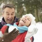 高级的夫妻有雪球战斗在白雪皑皑的林地 — 图库照片