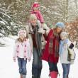 Family Walking Through Snowy Woodland — Stock Photo