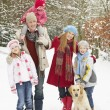 Family Walking Through Snowy Woodland — Stock Photo #4836155