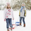 Children Pulling Sledge Through Snowy Landscape - Stock Photo
