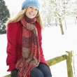 Stock Photo: WomStanding Outside In Snowy Landscape