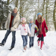 Foto Stock: Family Walking Through Snowy Woodland