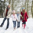 Family Walking Through Snowy Woodland — Stock Photo