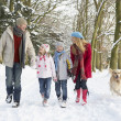 Family Walking Dog Through Snowy Woodland — Stock fotografie