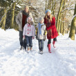Family Walking Through Snowy Woodland - Stok fotoraf