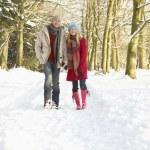 Couple Walking Through Snowy Woodland — Stock Photo #4836213