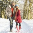 Couple Walking Through Snowy Woodland - Stok fotoraf
