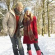 Couple Walking Through Snowy Woodland - Stockfoto