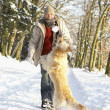 Man Walking Dog Through Snowy Woodland - Stockfoto