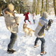 Family Having Snowball Fight In Snowy Woodland - Stockfoto