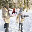 Stock Photo: Family Having Snowball Fight In Snowy Woodland