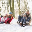 Family Sledging Through Snowy Woodland - Foto Stock