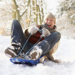 Foto Stock: MSledging Through Snowy Woodland