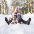 Boy And Girl Sledging Through Snowy Woodland - ストック写真