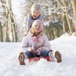 图库照片: Boy And Girl Sledging Through Snowy Woodland