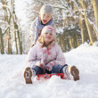 Stockfoto: Boy And Girl Sledging Through Snowy Woodland