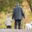 Man With Young Son Walking Dog Through Autumn Park — Stock Photo