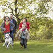 Stock Photo: Young Family Outdoors Walking Through Park With Dog