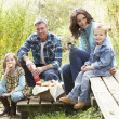 Parents And Children Having Picnic In Countryside - Stock Photo