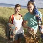 Young Couple Carrying Picnic Basket And Windbreak Walking Throug — Stock Photo
