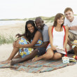 Group Of Young Friends Enjoying Picnic On Beach Together — Stock Photo #4836805