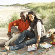 Young Couple Enjoying Picnic On Beach Together — Stock Photo
