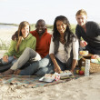 Group Of Young Friends Enjoying Picnic On Beach Together — Stock Photo #4836809