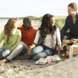 Royalty-Free Stock Photo: Group Of Young Friends Enjoying Picnic On Beach Together
