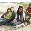 Group Of Young Friends Enjoying Picnic On Beach Together — Stock Photo