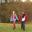 Romantic Teenage Couple Walking Through Autumn Landscape — Foto Stock