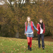 Romantic Teenage Couple Walking Through Autumn Landscape — Stock Photo #4836975