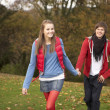 romantische teenage couple walking through herbstlandschaft — Stockfoto