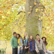 Group Of Six Teenage Friends Leaning Against Tree In Autumn Park — Foto de Stock