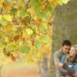 Shallow Focus View Of Romantic Teenage Couple By Tree In Autumn — Foto Stock